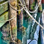 Below Dock By Jamie Rood