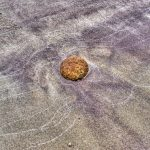 Stone in Sand by Jamie Rood