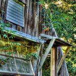 Morning Light Oer the Greenhouse