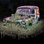 Brushy Truck - Wearable deign - black background